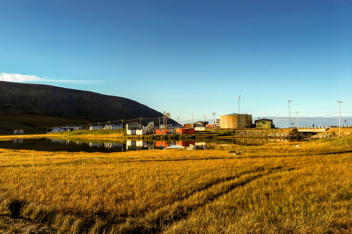 A landscape of a rural Alaska village: a grassy field with small houses and a shoreline