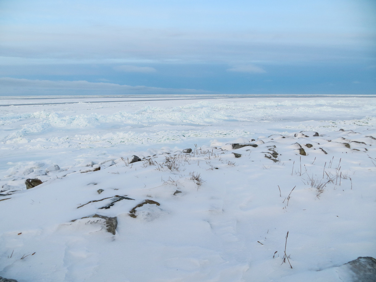 Shishmaref Sea Ice. (Photo: Maddie Winchester, KNOM)