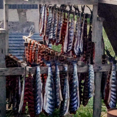 Salmon hangs from a wooden rack to dry.