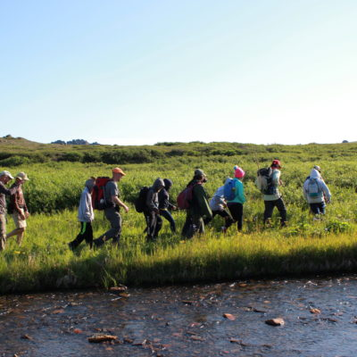 Scientists lead a line of students on a hike at Serpentine Hot Springs.