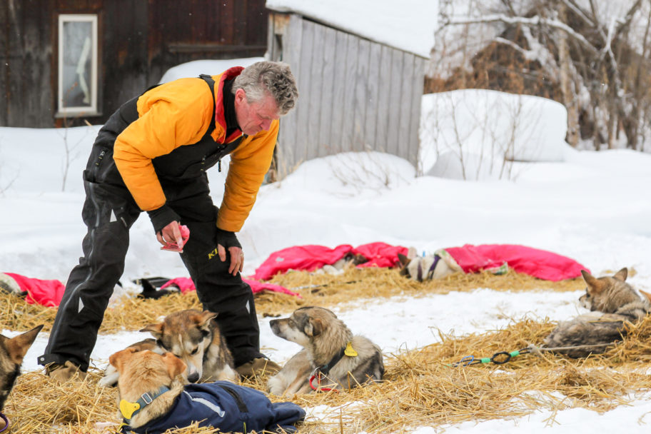 Musher attends to his dogs in an Iditarod checkpoint