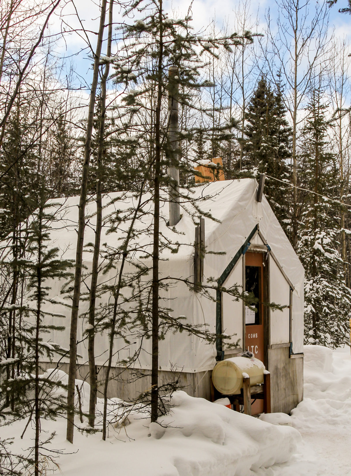 Small wall tent surrounded by a snowy forest at the remote Ophir checkpoint.