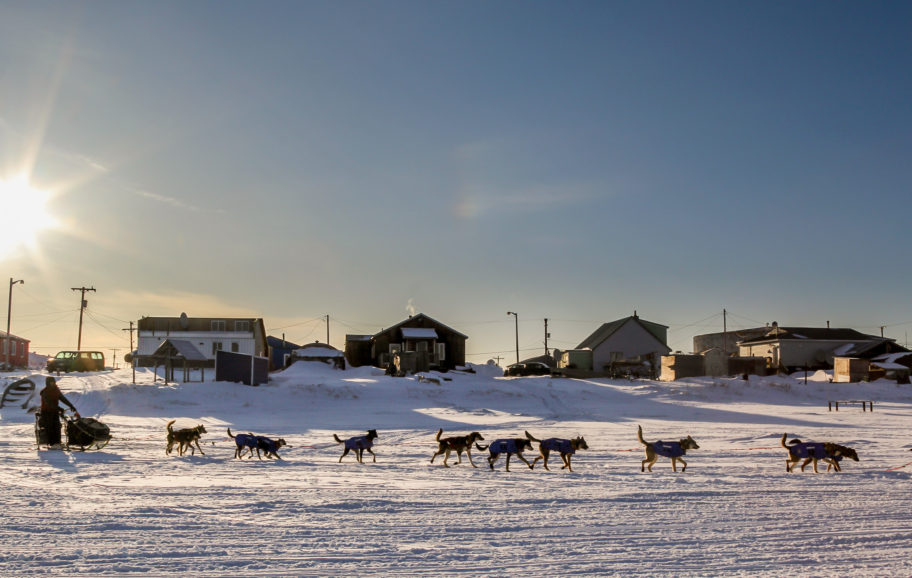 Iditarod musher leaving Unalakleet, with buildings of the village behind him