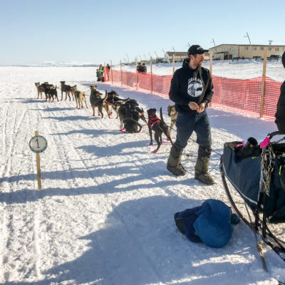 Man in black sweatshirt walks next to a team of sled dogs.