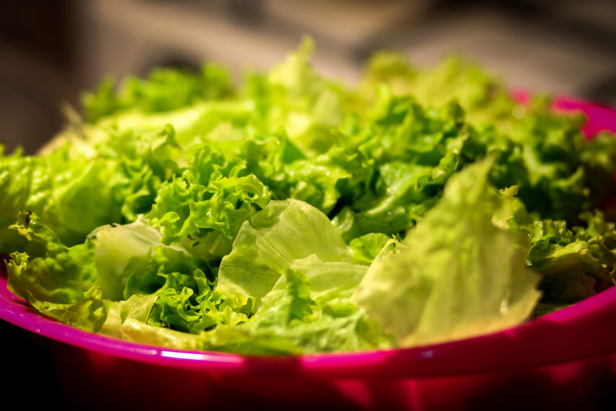 Close-up view of green lettuce in pink bowl