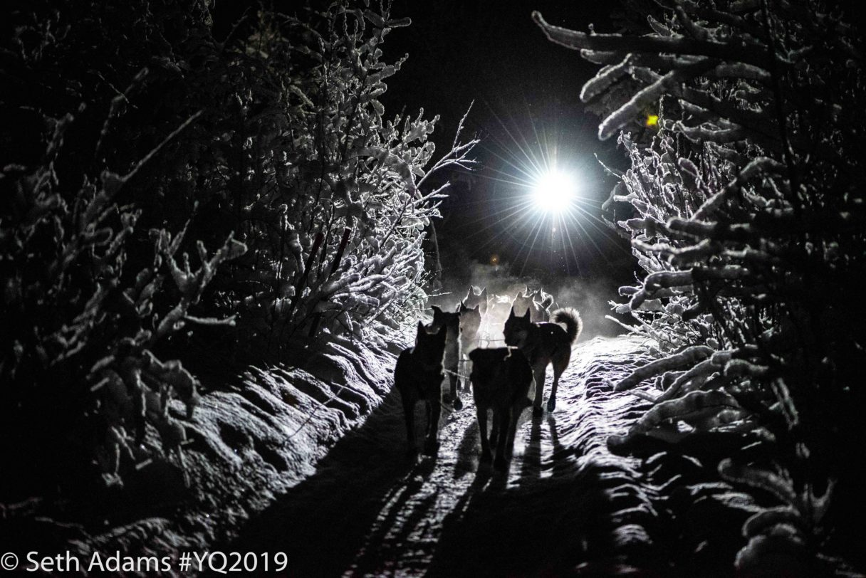 Silhouettes of musher with headlamp and sled dog team running through a narrow, snowy forest trail in the pitch blackness of night.