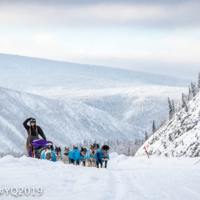 Sled dog team ascends trail amid snow-covered, forested mountains.