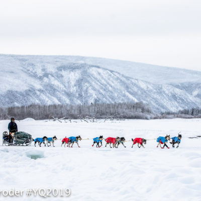 Snowy landscape of mountains and forest in background with sled dog team mushing on a trail in the foreground.