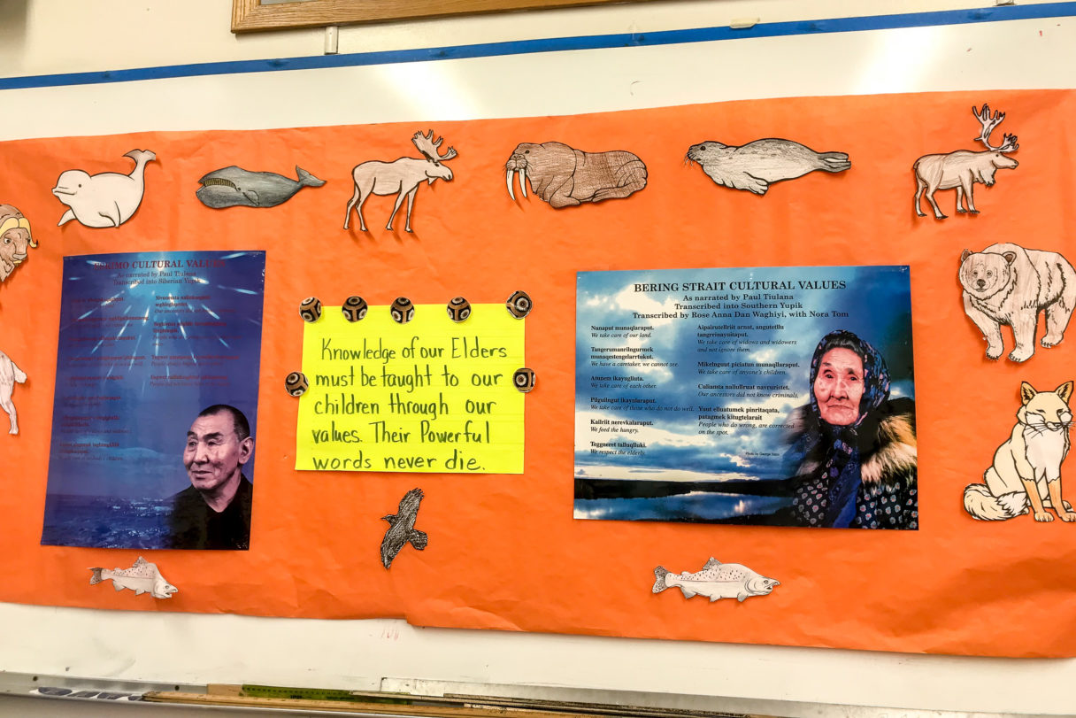 Bulletin board with posters and hand-drawn animals native to Western Alaska.