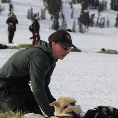 Sled dog musher kneeling next to his team