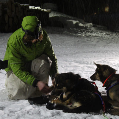 Musher in green jacket kneels next to resting sled dog team at nighttime