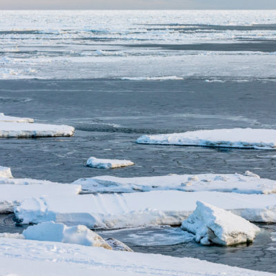 Landscape of icebergs and open water stretching to the horizon