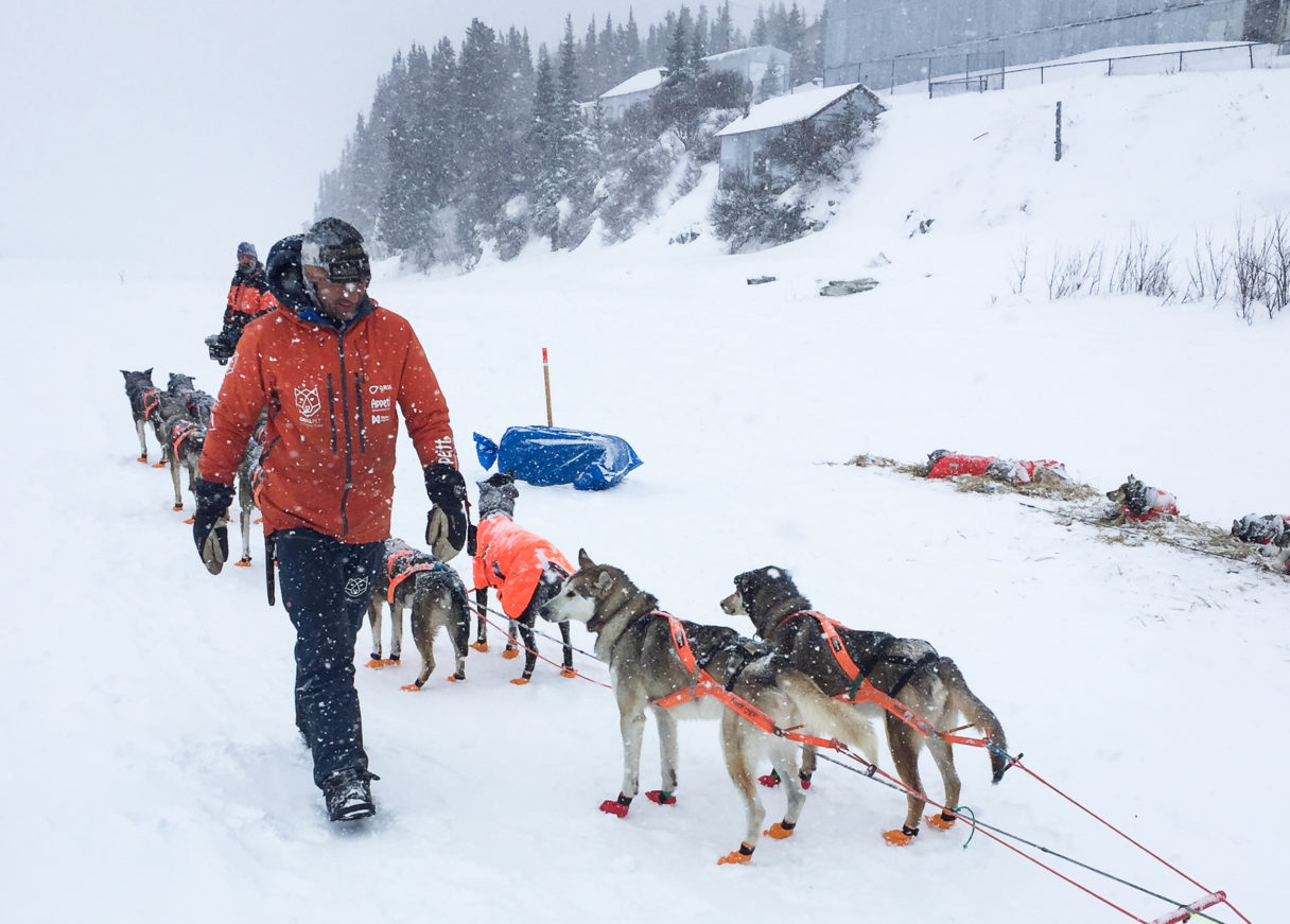 Thomas Waerner prepares to leaves for the run from White Mountain to Nome